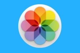 Fotos, conoce la aplicación al completo